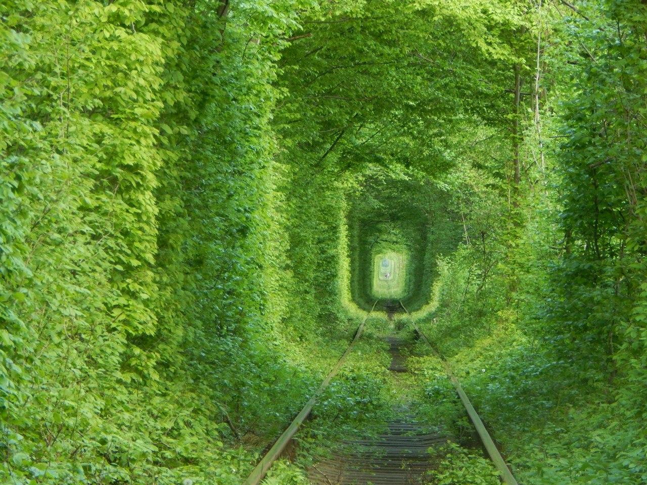 Тунель кохання в Рівному